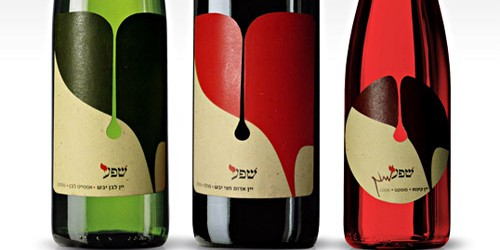 shefa young wine nine99design