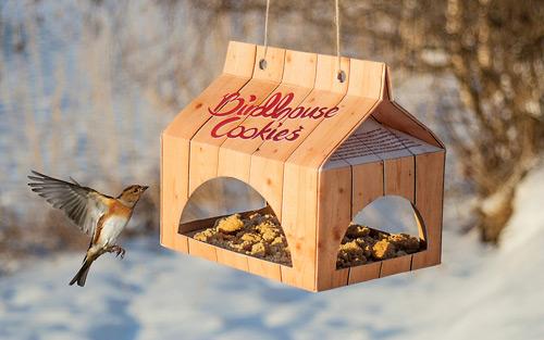 birdshousecookies