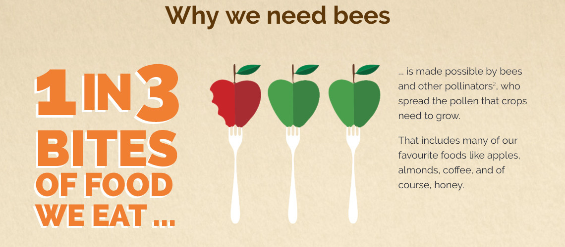 why-we-need-bees